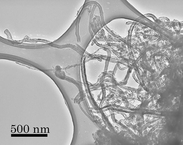 Carbon Nanotubes 1 by Yuki Kimura, Tohoku University